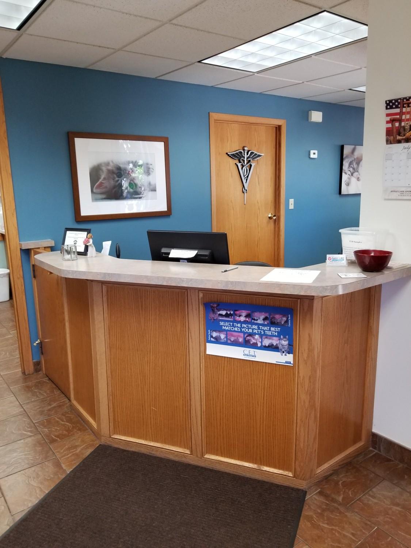 Cat Side | Apple Lake Animal Hospital | Veterinarian | Rosemount, MN 55068